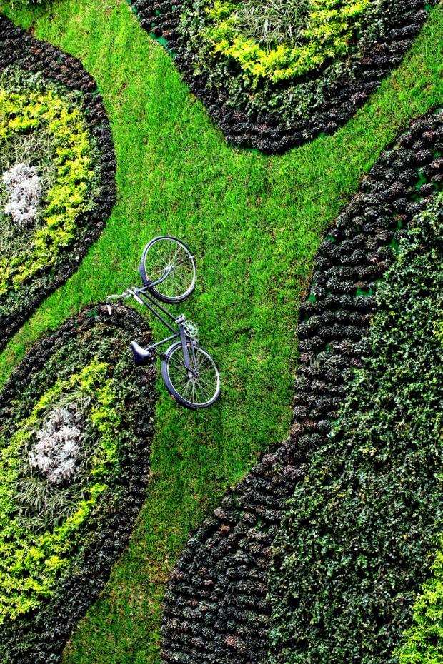 green-wall_040316_05